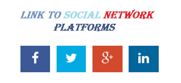 social-network-profile-front-end